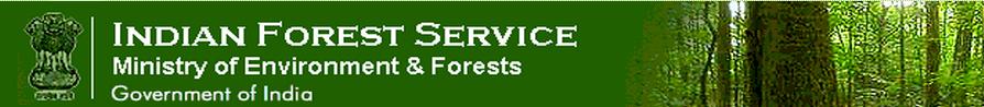 IFS Logo Large