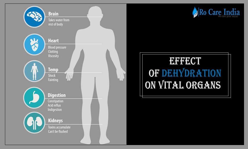 Effect Of Dehydration On Vital Organs